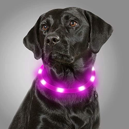 Joytale Collar Luminoso Perro, Collar para Mascotas LED Ajustables con Luz, Collares Recargable USB para Perros Pequeños, Medianos y Grandes, Morado
