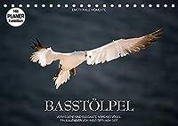 Emotionale Momente: Basstoelpel (Tischkalender 2022 DIN A5 quer): Elegante und verwegene Nordseevoegel. (Geburtstagskalender, 14 Seiten )