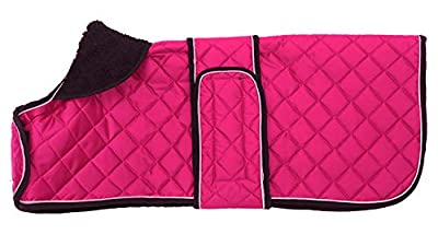 Morezi dachshund coats, dachshund coat, coat for dachshund, dog winter coat with padded fleece lining, outdoor dog apparel with adjustable bands - Pink - M