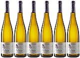 Pinord Mireia Gewurztraminer y Muscat - Paquete de 6 x 750 ml - Total: 4500 ml