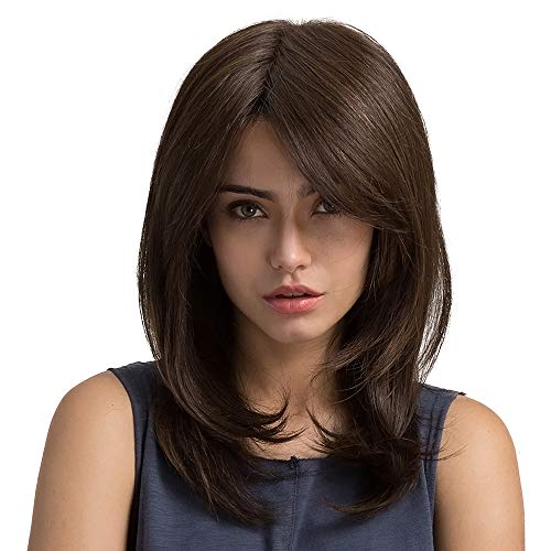 ColorfulPanda Perruques Brune Perruques longues Cheveux Perruque Cosplay Femmes Synthétiques Perruques 20inch (Brune)