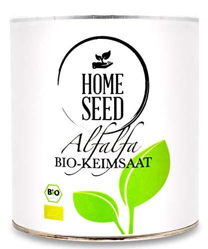 Homeseed Alfalfa [500g] 100% Bio Sprossensamen Keimsprossen Microgreens + digitales Kochbuch mit 15 Rezepten und Anleitung zum Sprossen ziehen (500)