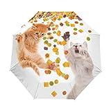 Suzanne Betty - Ombrello da viaggio con apertura automatica, divertente gatto mangia cibo secco, 3 pieghe, antivento, UV automatico
