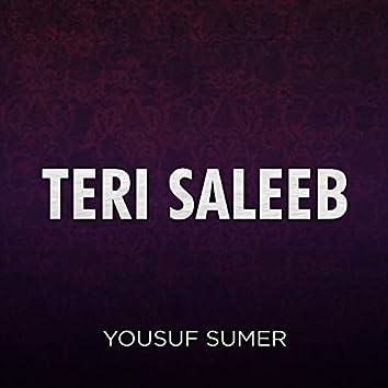 Teri Saleeb
