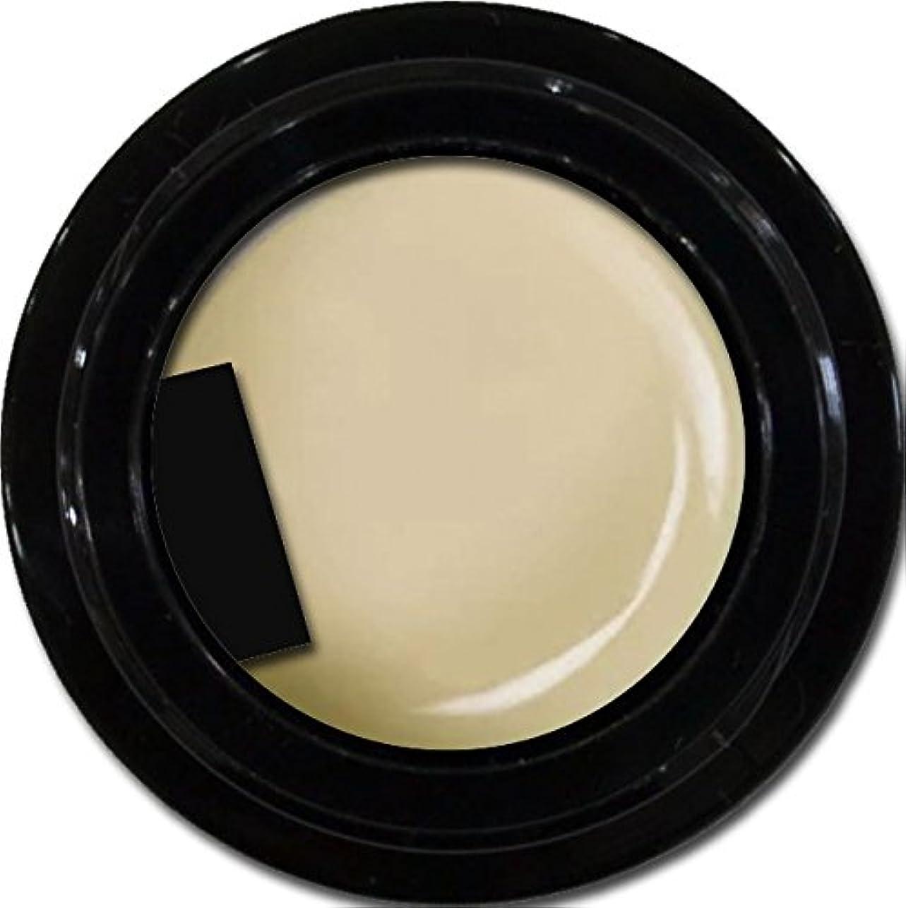 温室ソフィーレクリエーションカラージェル enchant gel color gel S601 GlegeShear 3g/ エンチャントジェル カラージェル グレージュシアー 3グラム