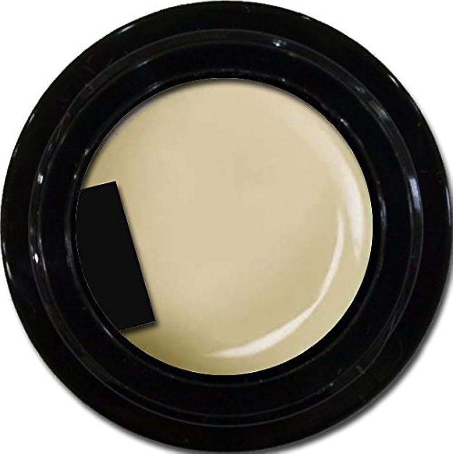 記念入植者ワードローブカラージェル enchant gel color gel S601 GlegeShear 3g/ エンチャントジェル カラージェル グレージュシアー 3グラム