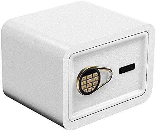 REWD - Caja fuerte con cerradura mecánica para la seguridad en casa pequeña llave con contraseña, armario de 2 capas (tamaño: 30 x 30 x 38)