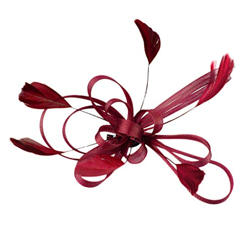 Diadema Fascinador Encantadoras Flores De Malla Pluma Tocado La Red Cap Del Banquete Fiesta Novia Adornos Para El Pelo Plumas Flor Elegante, Boda, Mujer, Día Carreras