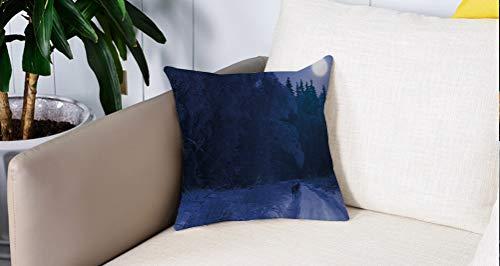 Luoquan Kissenbezüge Super Weich Home Dekoration,Nachthimmel, Alaska USA Waldlandschaft bedeckt mit Schnee Einsamer Wildwolf u,Kopfkissenbezug Pillowcase Kissen für Wohnzimmer Sofa Bed,45x45cm