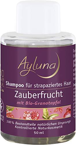 Ayluna Bio Shampoo Zauberfrucht für strapaziertes Haar (1 x 50 ml)