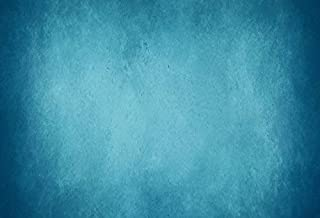 Yeele 9x6ft Light Blue Backdrop Abstract Gradient Blurry Color Home Photography Background Baby Adult Family Party Booth Portraits Photo Video Shooting Photocall Vinyl Cloth Studio Props