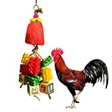 Vehomy Chicken Toys for Hen with Natural Colorful Loofah Handmade Chewing Foraging Hanging Toys for Hens Chickens