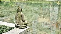 ジグソーパズル 1000 ピース 大人 拼图游戏   湖の模様の仏像