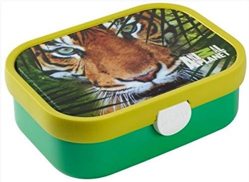 Mepal Rosti Brotdose Campus mit Bento-Einsatz - Animal Planet Tiger 107440065354