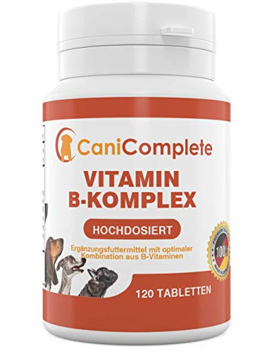 CaniComplete Complesso vitaminico B per Cani, Gatti, B1, B2, B3, B5, B6, B9, B12, K3, Calcio, Acido folico. Supporta funzioni nervose Importanti. 120 Pezzi (Confezione 4 Mesi)
