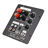 WUHUAROU Altavoces 2.1 Subwoofer Altavoz Amplificador Tablero TPA3118 Audio 30W * 2 + 60W Sub AMP con Salida 2.0 Independiente (Color : TPA3118)