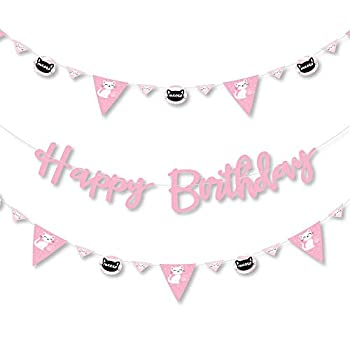 Big Dot of Happiness Purr-fect Kitty Cat - Kitten Meow Birthday Party Letter Banner Decoration - 36 Banner Cutouts and Happy Birthday Banner Letters