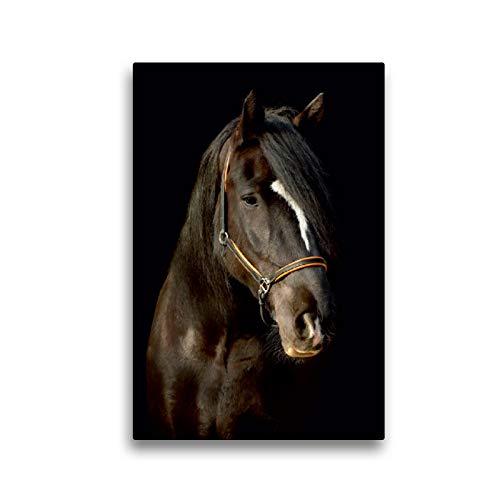 Premium Textil-Leinwand 30 x 45 cm Hoch-Format Shire Horse | Wandbild, HD-Bild auf Keilrahmen, Fertigbild auf hochwertigem Vlies, Leinwanddruck von Sabine Heüveldop