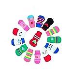 LifeWheel Calcetines Antideslizantes para Perros o Gatos, Control de Tracción para Interiores, Botas y Protectores de Patas para Mascotas (Color Aleatorio)
