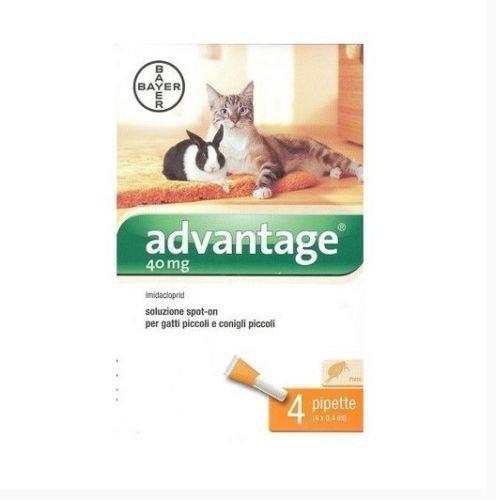 Bayer Advantage ANTIPULCI per Gatti sotto I 4 kg ANTIPARASSITARIO FIALETTE