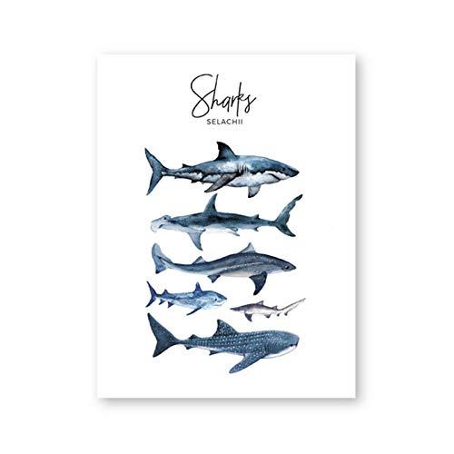 AdoDecor Shark Species Poster und Drucke Boy Nursery Wanddekoration Aquarellhaie Wandkunst Bild Leinwand Malerei Kinderzimmer Dekoration 40x60cm Kein Rahmen