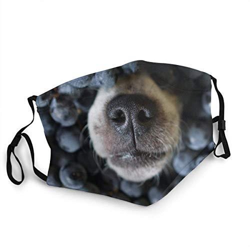 Tiere Wildlife Hundefutter und Getränk Gesichtsbedeckung Wiederverwendbare, waschbare Tücher, Gesichtsbedeckung