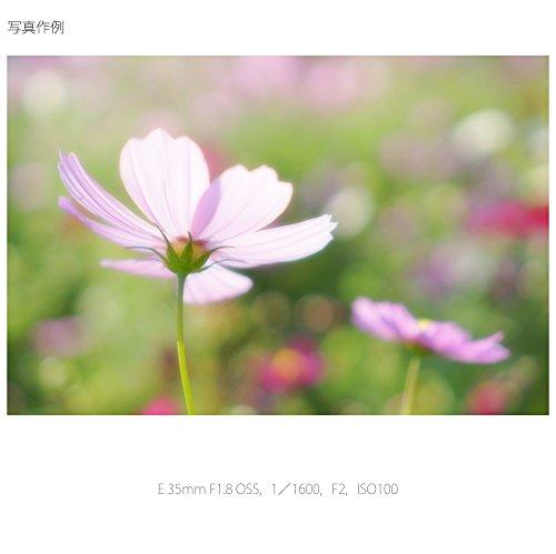 ソニー単焦点レンズE35mmF1.8OSSソニーEマウント用APS-C専用SEL35F18
