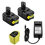 YTPowerPal 2Pack 5.0Ah Replacement P108 Lithium Ryobi 18V Battery + P119 Ryobi Charger Li-ion & Ni-cad for Ryobi Oneplus Battery P100 P102 P103 P105 P107 P118 Ryobi 18V Battery Charger