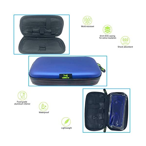 buy  Travel Rx Diabetic Insulin Case/Cooler Bag Ice Gel ... Diabetes Care