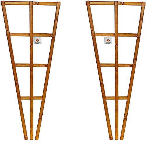 Set of 2 x Fan Wooden Wall Trellis - Timber Climbing Flower Plant Panel - Wood Climbing Rose Support Frame