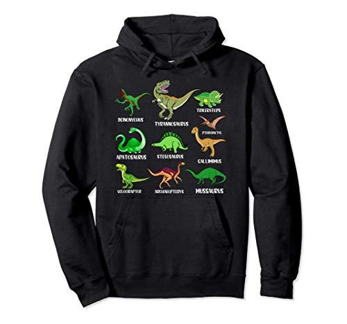 Types Of Dinosaurs - Dino Identification Graphic Sudadera con Capucha