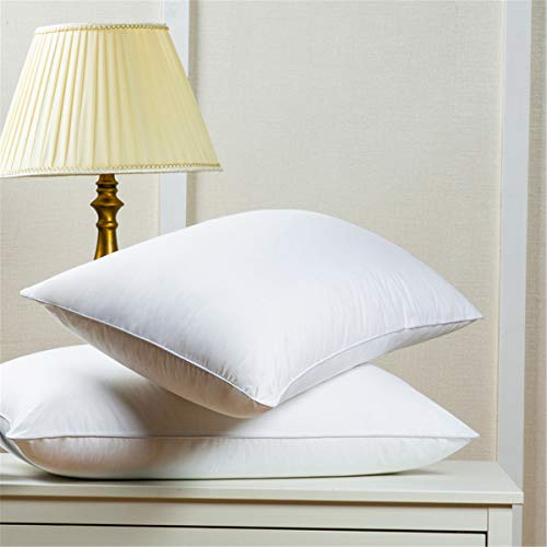 HODOMG Goose Down Alternative Luxurious (2-Pack) 100% Egyptian Cotton Fabric Bed Pillows 20x28inches Microfiber Filled Sleep Pillows