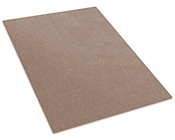 11 X11  Square - Sage Brush - Indoor/Outdoor Area Rug Carpet Runners & Stair Treads with a Premium Nylon Fabric Finished Edges .