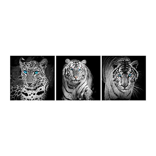 Broadroot 5D DIY Vollbohrer Platz Diamant Malerei Tiger Löwe Leopard Kreuzstich Stickerei 3-Bilder Kombination Kit Handwerk Hand Wohnkultur Geschenk (01)