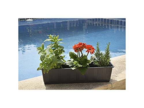 GREEN AT HOME: Kit de 3 Jardineras para Balcones y Barandillas. Plantas y Flores de Jardín, de...