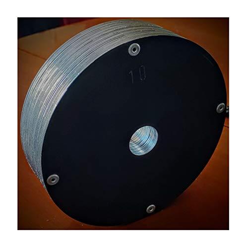 BAIA SICURA Dischi Pesi Palestra da 5 kg e 10 kg per Manubri e Bilancieri Ø 28 mm (Grigio Antracite RAL 7016, 4 Dischi da 5 kg)