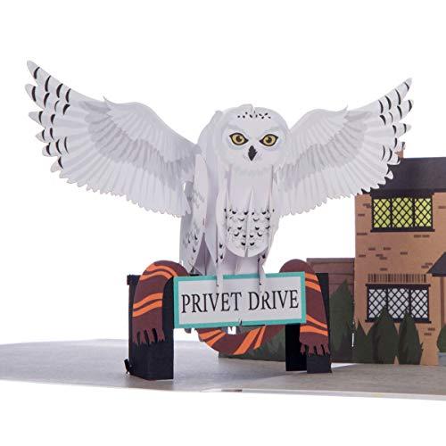 Harry Potter Karte - Hedwig Popup-Karte | enthält Hogwarts Umschlag und Notizkarte für Ihre Nachricht | Warner Brothers Offizielles Lizenzprodukt