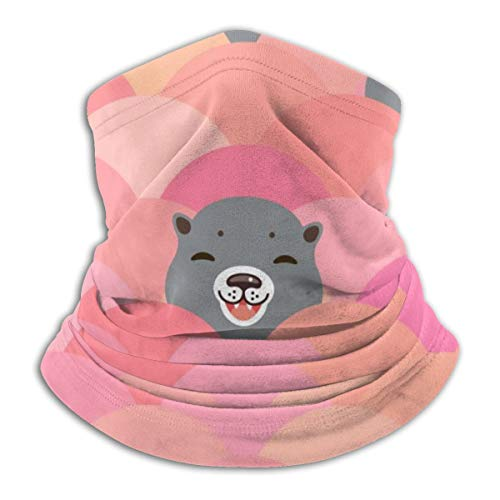Akhy Multifunctional Headwear Face Mask Headband Neck Gaiter Kawaii Grey Otters Head Balaclava for Men and Women