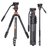 10 Best Camera Monopod with Fluid Heads