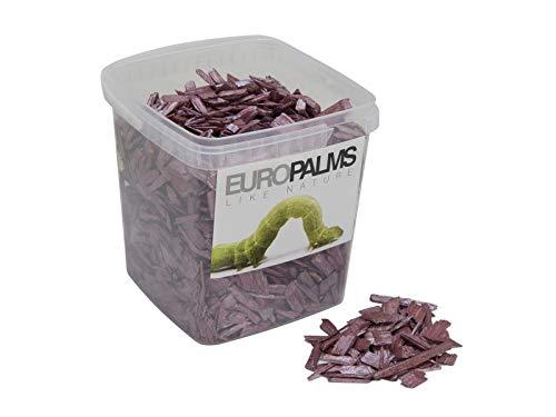EUROPALMS Deko-Holz, Cassis, 5,5l Eimer | Das ideale Füllmaterial, um Pflanzen zu stabilisieren