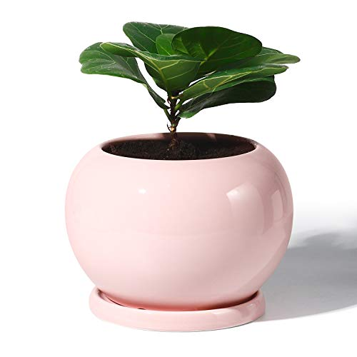 POTEY Planter Ceramic Plant Flower Pot - 5 Inch Large Indoor Glazed Container Bonsai with Drainage Hole Saucer - Large Space - Golbe,Light Pink