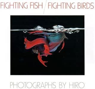 Fighting Fish/Fighting Birds