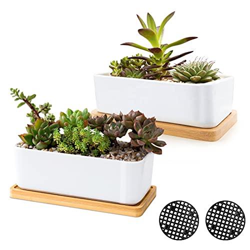 Weiße keramische Sukkulententöpfe, ARVINKEY Sukkulenter Pflanzer für drinnen und draußen, 2er-Set Kleiner Kaktusbehälter, Bonsai-Töpfe, Blumentöpfe mit Drainageloch und Bambusschale (Keine Pflanze)