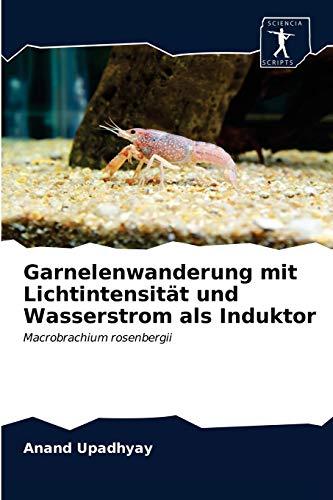 Garnelenwanderung mit Lichtintensität und Wasserstrom als Induktor: Macrobrachium rosenbergii