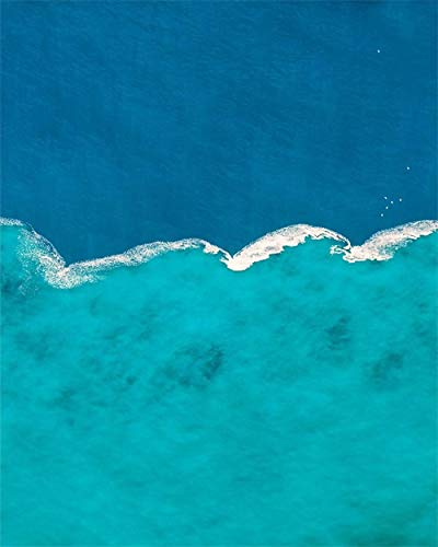 nobrand canvas kunst schilderij Met blik op het zoetwater komen zoutwater kunst poster afbeelding wanddecoratie moderne wooncultuur 50x60cm geen lijst