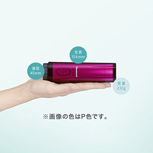 パナソニックおしり洗浄器ハンディ・トワレ携帯用レッドDL-P300-R