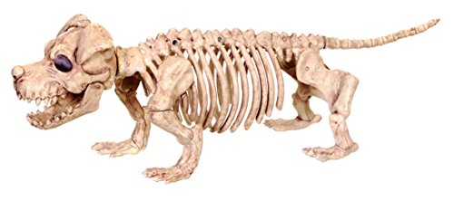 Halloween Puppy Skeleton Prop