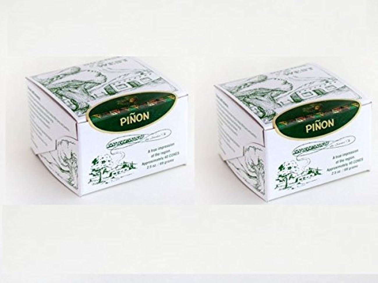 一般的に前置詞コンクリート(80 Pack) - Pinon Incense Box with 80 Bricks