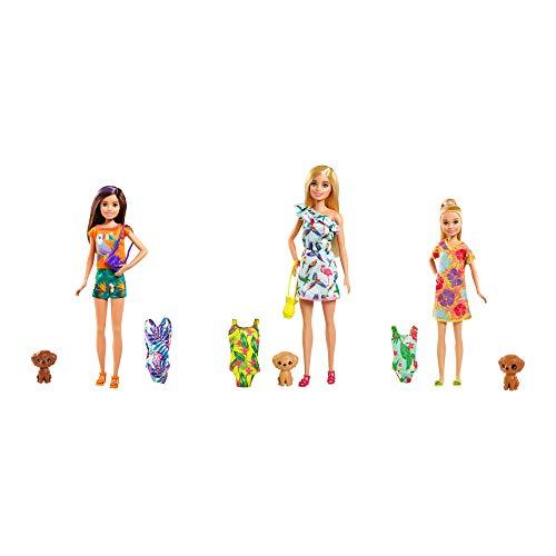 abgee 900 GRT86 EA Barbie Cumpleaños Sorpresa Hermana & Pet Accs, Multicolor