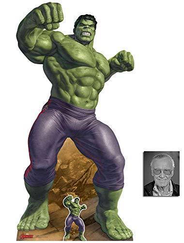Marvel Legends Der unglaubliche Hulk Offiziell Lebensgrosse und klein Pappfiguren/Stehplatzinhaber/Aufsteller, 190cm x 94cm Enthält 8X10 Foto